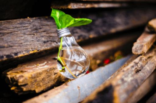 Żarówka zarządzanie innowacjami, zarządzanie pomysłami